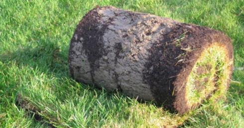 På hagesentre får du kjøpt gress på rull, ferdig til å rulle ut på godt preparert underlag.  Foto: Produsenten