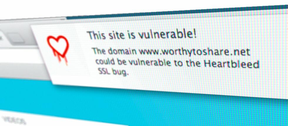 IKKE TETTET: Mange nettsteder har fortsatt ikke tettet «Heartbleed»-sikkerhetshullet. Denne Chrome-utvidelsen advarer deg mens du surfer. Foto: PÅL JOAKIM OLSEN