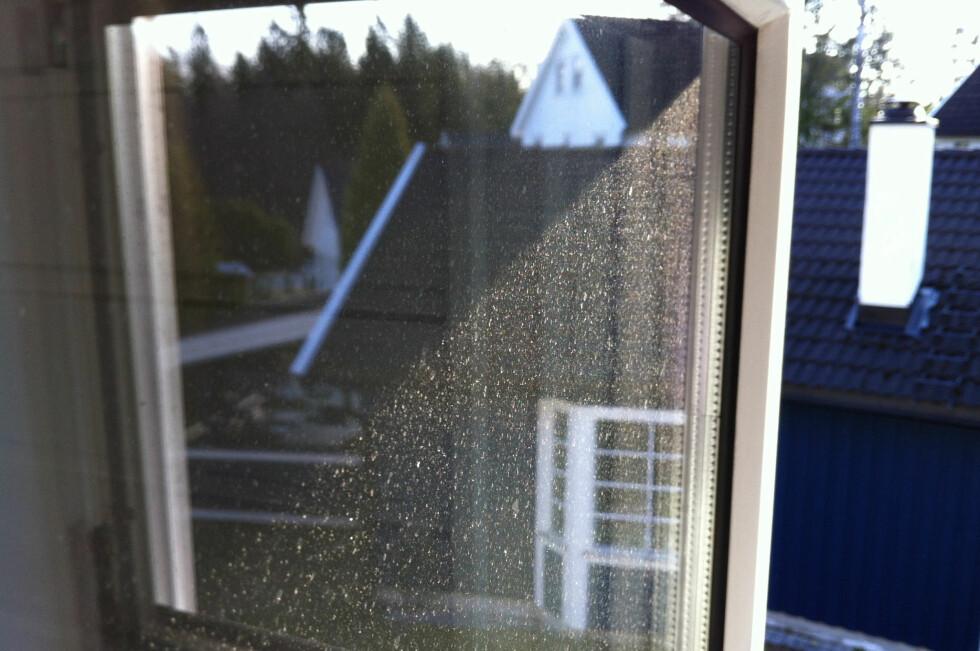 Ubarmhjertig: Ikke vasket vinduene i år, du heller?  Foto: DINSIDE.NO