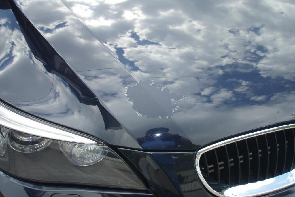 <b>LAKKEN FORSVANT I VASK:</b> Klarlakken flaket av da bileieren skulle vaske bilen med høyttrykksspyleren. Foto: Forbrukerrådet