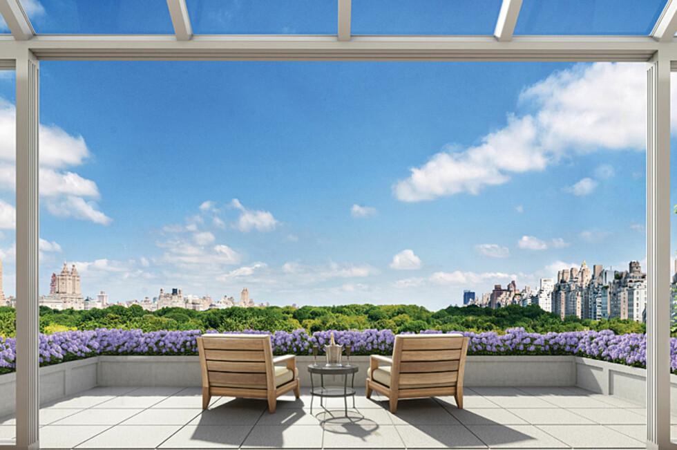 Toppleiligheten i NewYork-bygården har en utsikt de aller fleste bare kan drømme om. Foto: 22centralparksouth.com
