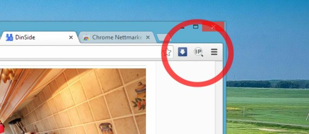 Et klikk på IP-knappen gir deg både tenkelige og utenkelige detaljer om nettstedet og dets bakmenn.