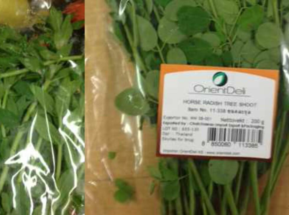 <b>Publisert på Matportalen 15. november 2013:</b> Importøren Orientdeli AS har trukket tilbake to urter etter funn av Salmonella og høye verdier av E.coli. Produktene er «Horse Radish Three Shoot» fra Thailand og «Rice Paddy Herb» fra Vietnam. Foto: Mattilsynet