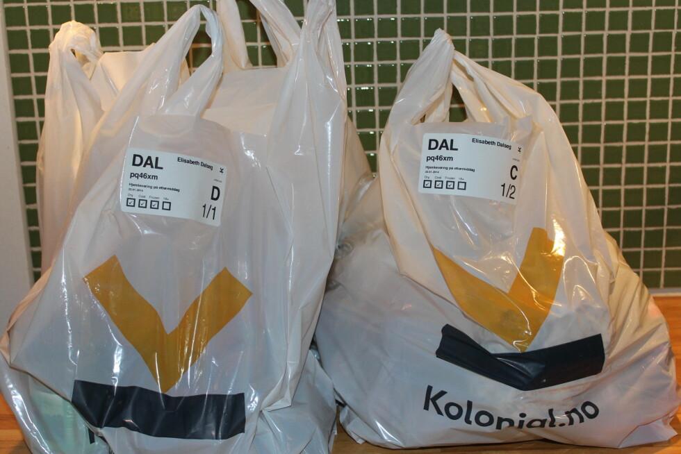 Tre bæreposer, pent og logisk pakket (ja, vi bryr oss om noen legger frysevarer ved siden av tomatene) og ikke minst - levert på døren.  Foto: ELISABETH DALSEG