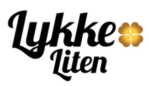 Slik ser logoen til den nye kjeden ut. Foto: Bunnpris