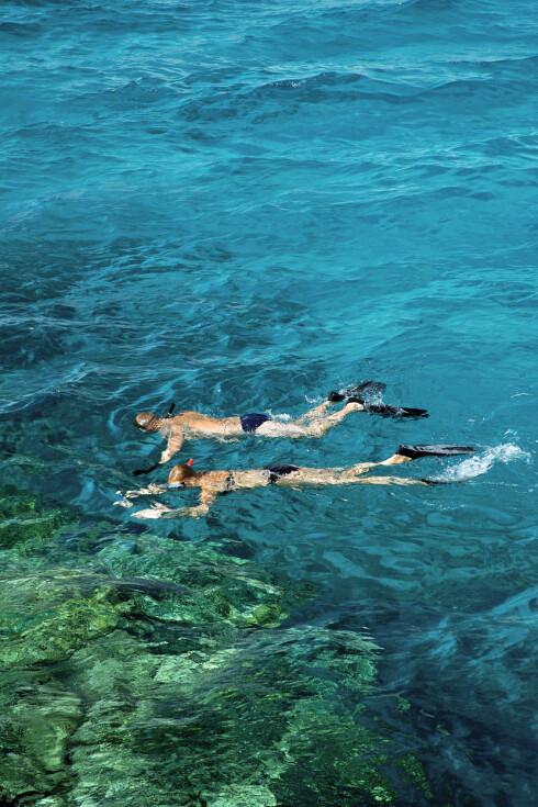 <strong>I DET BLÅ:</strong> Surfer du i Egypt, og selv har valgt å kunne det, må du trolig se langt etter pengene dine.  Foto: Ving
