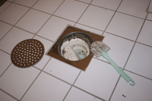 Rens sluket før du pensjonerer oppvaskbørsten. Foto: Elisabeth Dalseg