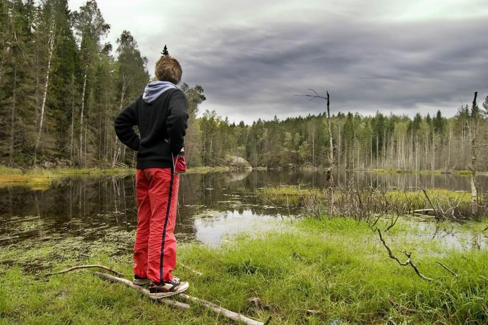 HVOR ER JEG?  Skal du lære deg å bruke kart og kompass, er praksis det beste, sier turveileder Moråker i DNT.   Foto: PantherMedia