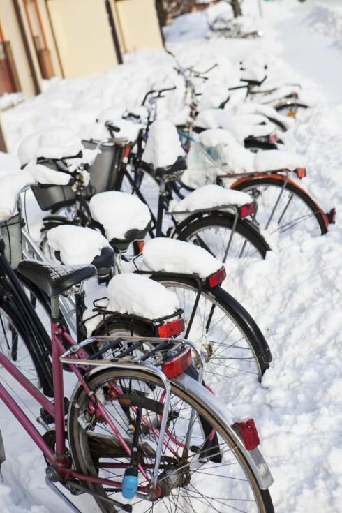 TYPISK SYN: Mange dropper sykkelen til jobb om vinteren fordi det er for mye ork.  Foto: PantherMedia.com