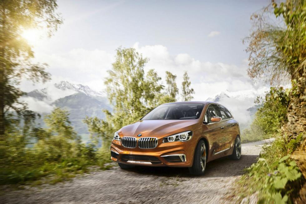 Ut i skogen. Gapet mellom stasjonsvogn og X-modellene skal tettes. Foto:  BMW