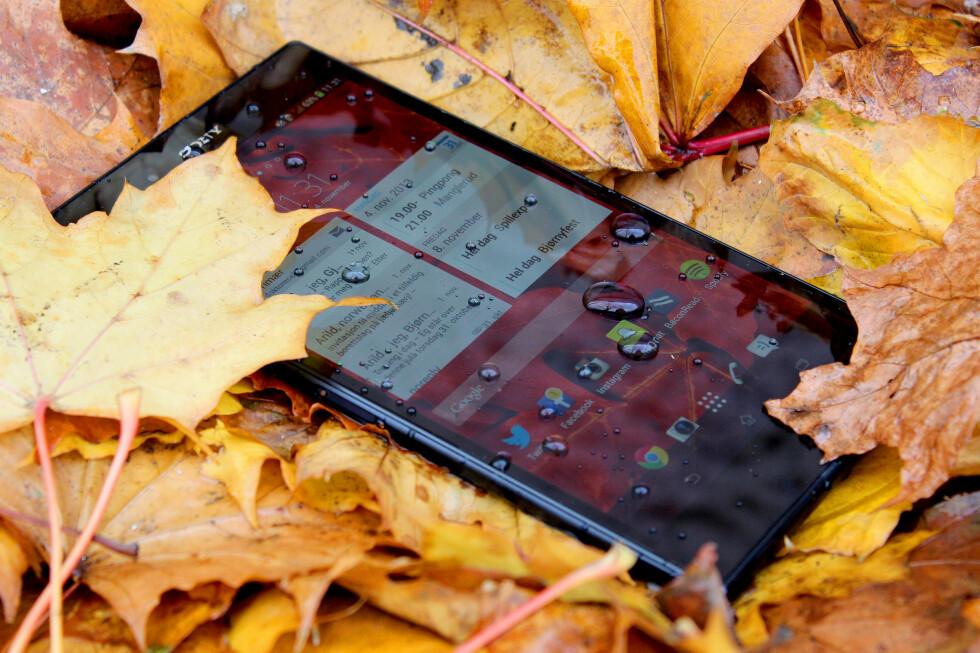 <strong>HØSTSIKKER:</strong> Sony Xperia Z Ultra tåler høstens regnvær, men den er ikke spesielt egnet til å ligge i lommen din.  Foto: OLE PETTER BAUGERØD STOKKE