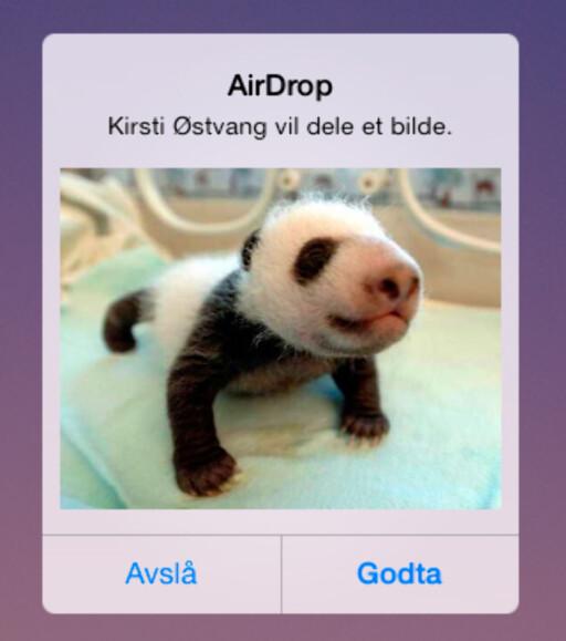 AirDrop er den aller enkleste måten å dele et bilde med en annen iOS-bruker på. Foto: Kirsti Østvang