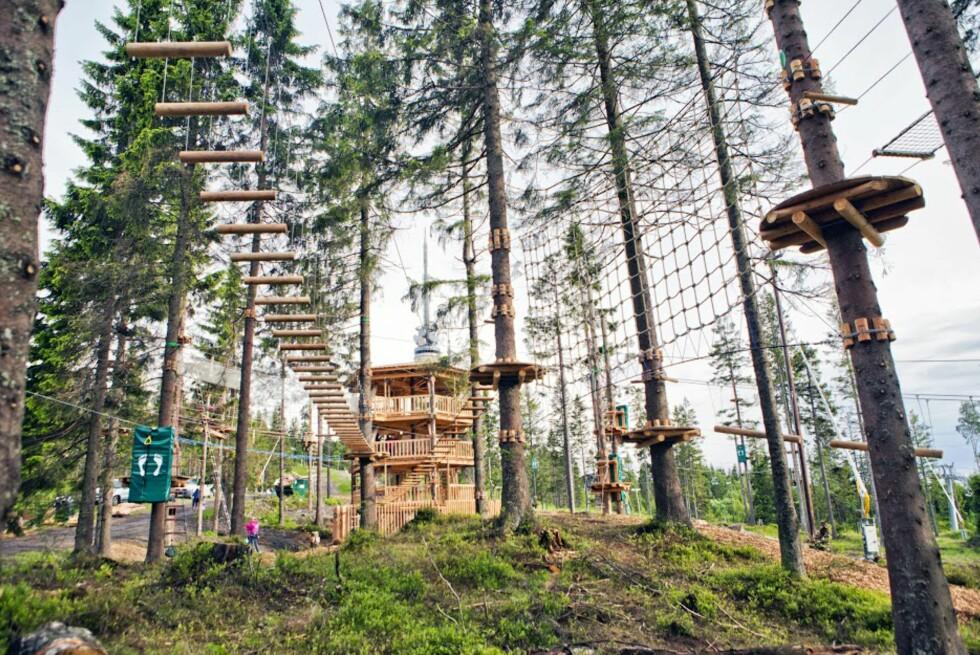 PASSER ALLE: Løypene varierer fra de snille og familievennlige til 20 meter opp i høyden.  Foto: Oslo sommerpark/Hanne Norstrøm