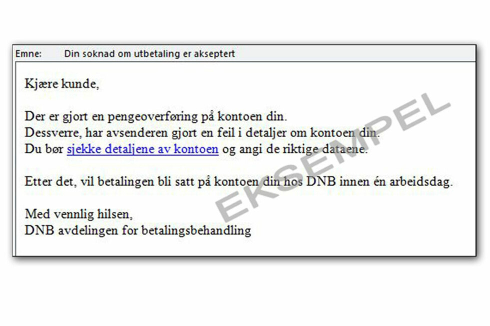 <strong>SVINDEL #1:</strong> Dette eksempelet fra DNB er skrevet på relativt godt norsk, men er likevel bare tull.  Foto: DNB