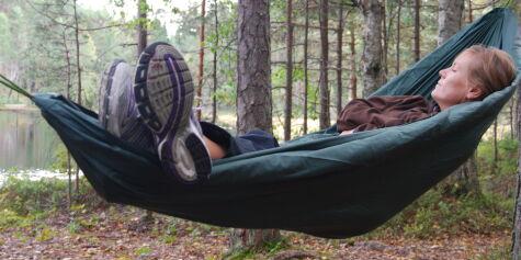 image: Hengekøyer for skogsturen