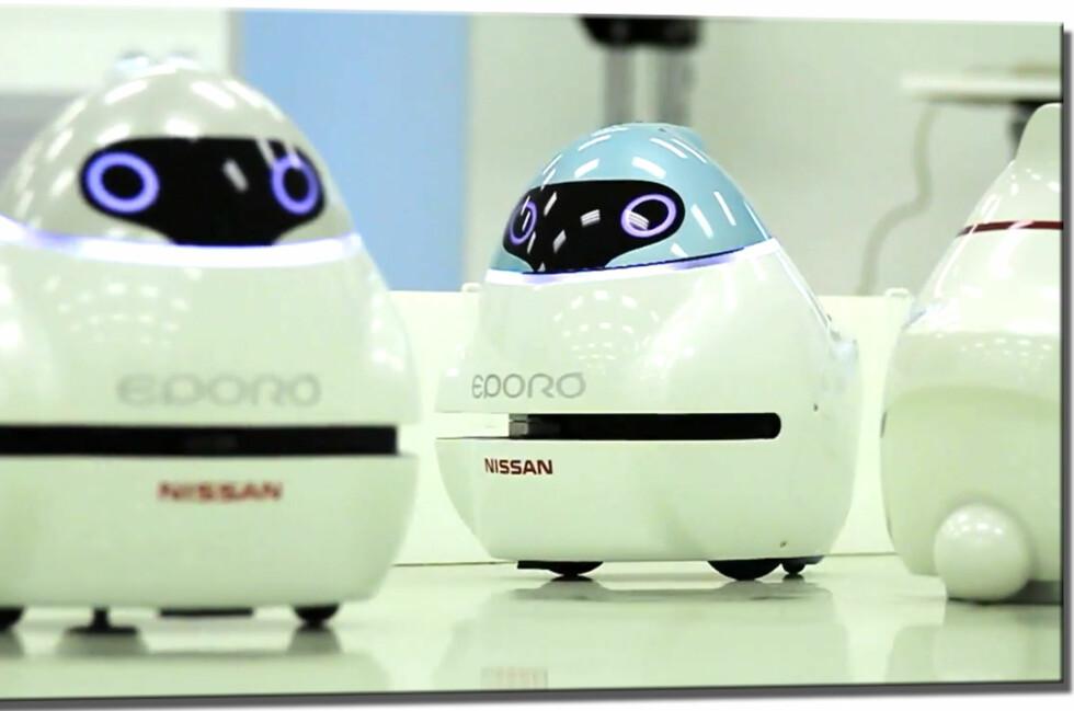 Disse små smartingene er nøkkelen til Nissans utvikling av selvstyrte biler. Foto: Nissan