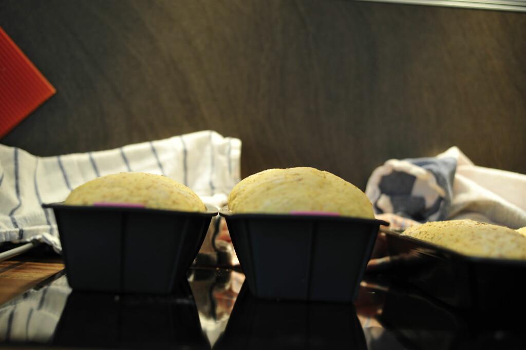 Etter en times etterheving: Tørrgjæren begynner å ta igjen ferskgjæren, men brødet med fersk gjær er fremdeles litt høyere (til høyre). Foto: Kristin Sørdal
