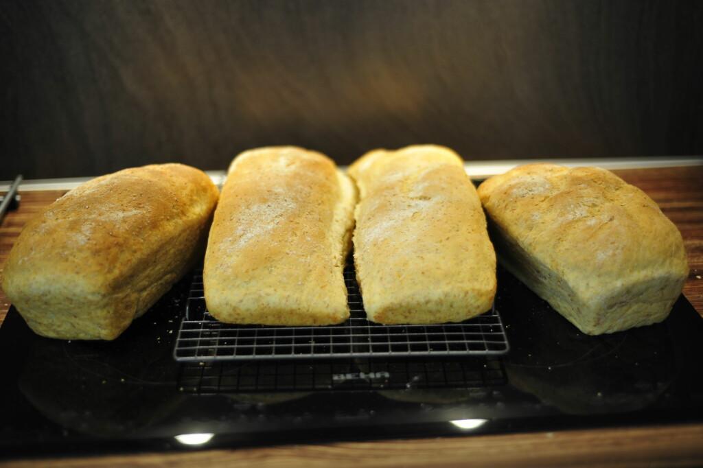 Etter steking er brødene temmelig like. Brødene med fersk gjær til høyre og de med tørrgjær til venstre. Foto: KRISTIN SØRDAL
