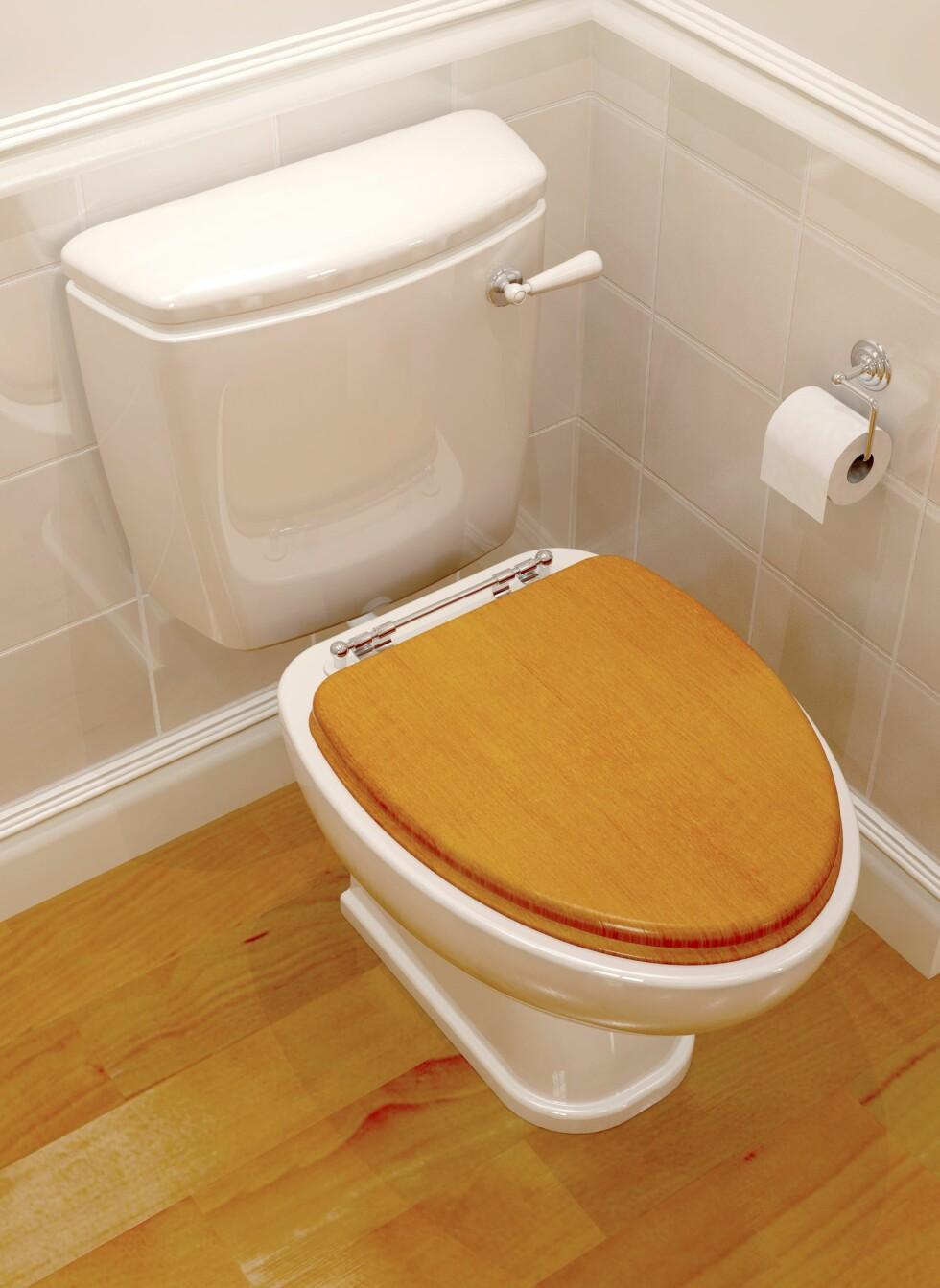 I stedet for å bytte toalettet, kan du for eksempel investere i et nytt toalettsete som passer i det nye interiøret.  Foto: Panther Media