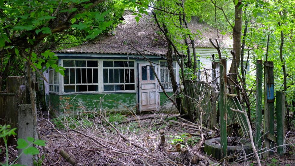 Husene i landsbyene blir nå spist opp av naturen.  Foto: Ole Petter Baugerød Stokke