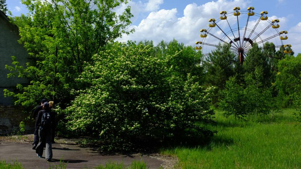 Pariserhjulet er selve symbolet på Pripjat, og kan sees over store avstander.  Foto: Ole Petter Baugerød Stokke