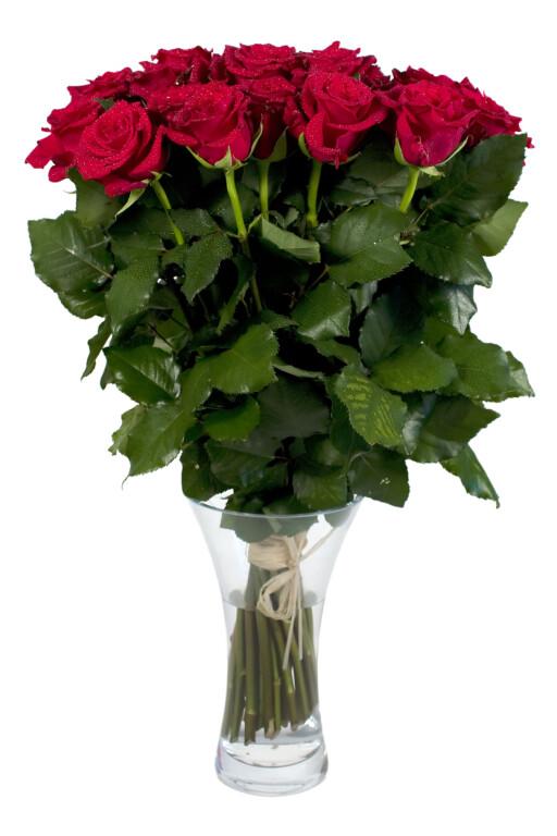 Litt vodka i vasen, og rosene holder seg fine, mye lenger.  Foto: Colourbox