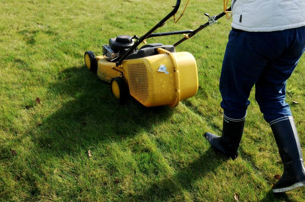 Er du litt treg med å klippe gresset, bør du velge en gressklipper med oppsamler, eller kanskje en robotklipper?  Foto: Colourbox
