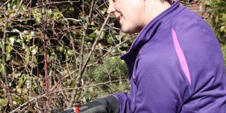 Vårens hagearbeid bør du gjøre nå