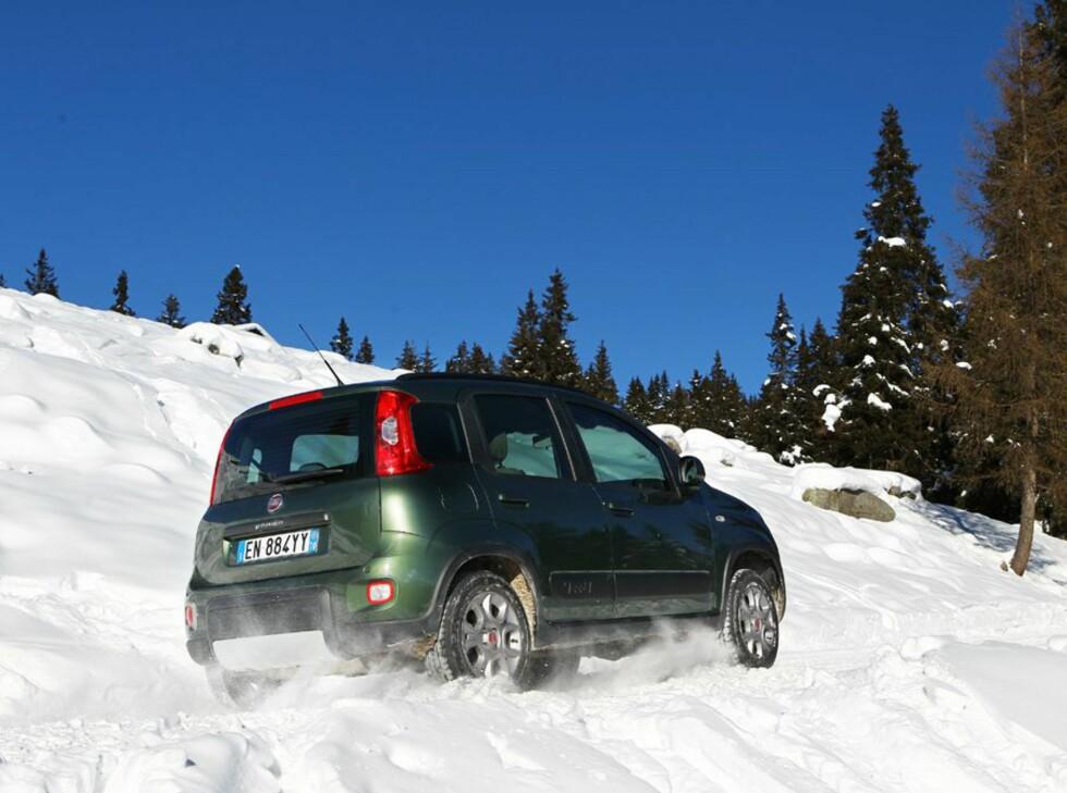 FIAT PANDA 4x4: Norges rimeligste bil med firehjulsdrift tar seg faktisk bra frem, tross små hjul og ikke alt for høy bakkeklaring.  Foto: FIAT