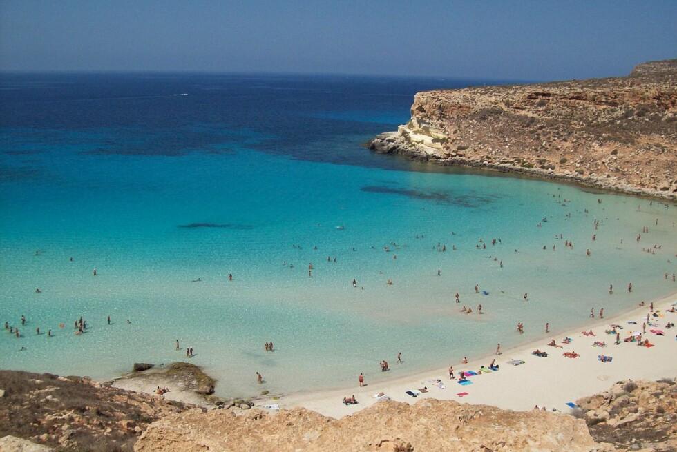 Rabbit Beach på den lille øya Lampedusa utenfor Sicilia hedres som verdens fineste strand i 2013 av Trip Advisor. (Bildet publisert under Creative Commons-lisens) Foto: Figiu (Wikimedia Commons)