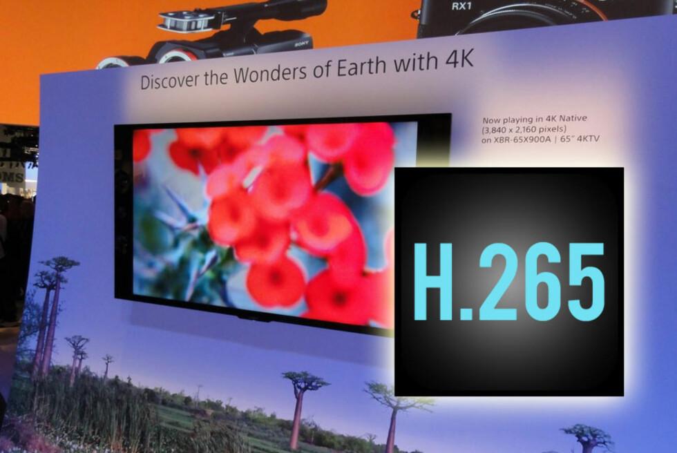 Sony er blant TV-produsentene som har annonsert TV-er med UHD (4K)-oppløsning. Men foreløpig er det lite innhold å velge mellom. Det kommer sannsynligvis til å endre seg raskt, takket være H.265-formatet. Foto: Bjørn Eirik Loftås