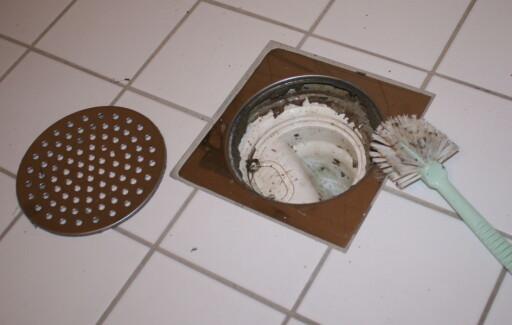 Det aller viktigste du kan gjøre med oppvaskkosten før du kaster den, var det et takstmann som tipset oss om: Rense sluket.  Foto: Elisabeth Dalseg