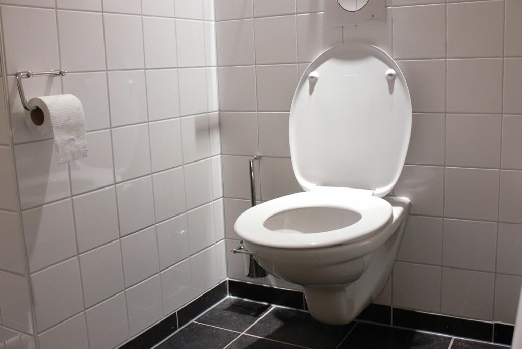 Denne typen toaletter blir stadig vanligere, men er ekstra viktige å installere riktig.