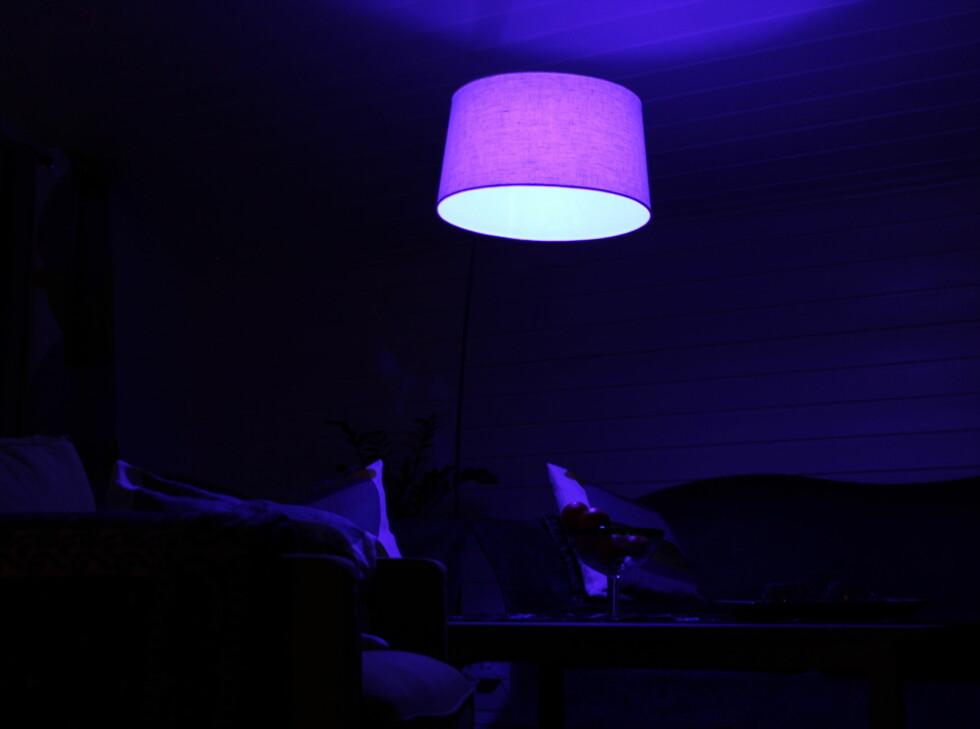 Hva med litt blått lys i stuen? Foto: Kristin Sørdal