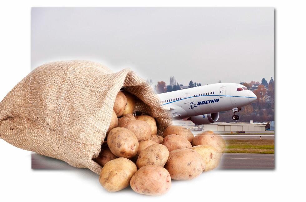 POTETFORSKNING: Nyere forskning utført av flyprodusenten Boeing viser at poteter kan brukes til så mangt - inkludert å forbedre trådløsforbindelsen i lufta. Foto: Panthermedia/Boeing