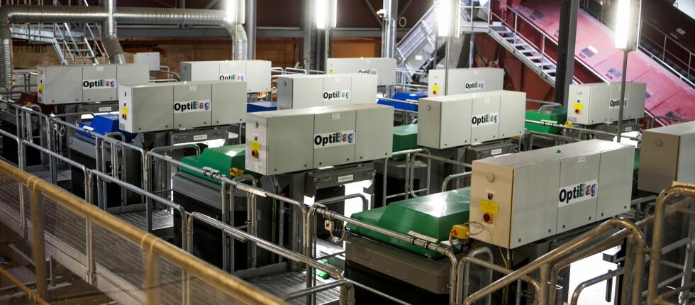 VERDENS STØRSTE: Verdens største optiske sorteringsanlegg ligger på Haraldrud i Oslo. Her sorteres de grønne og blå avfallsposene fra Oslos husholdninger - og sendes derfra til respektive gjenvinningsanlegg. Foto: Per Ervland
