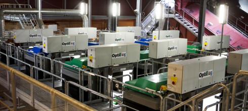 Verdens største optiske sorteringsanlegg