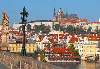 Sprit fra Tsjekkia forgiftet