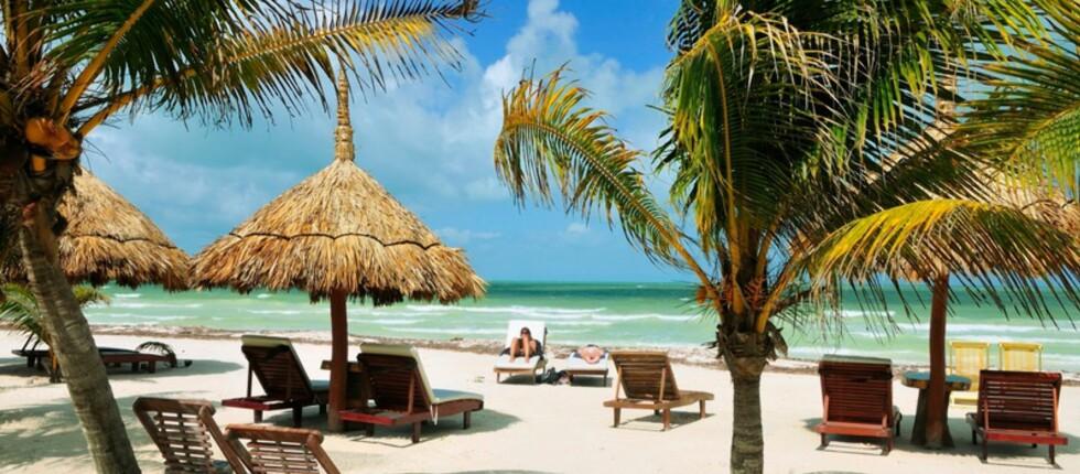 Drømmer du om å ligge her nå? Da bør du sjekke de billige charterturene. Foto: Star Tour