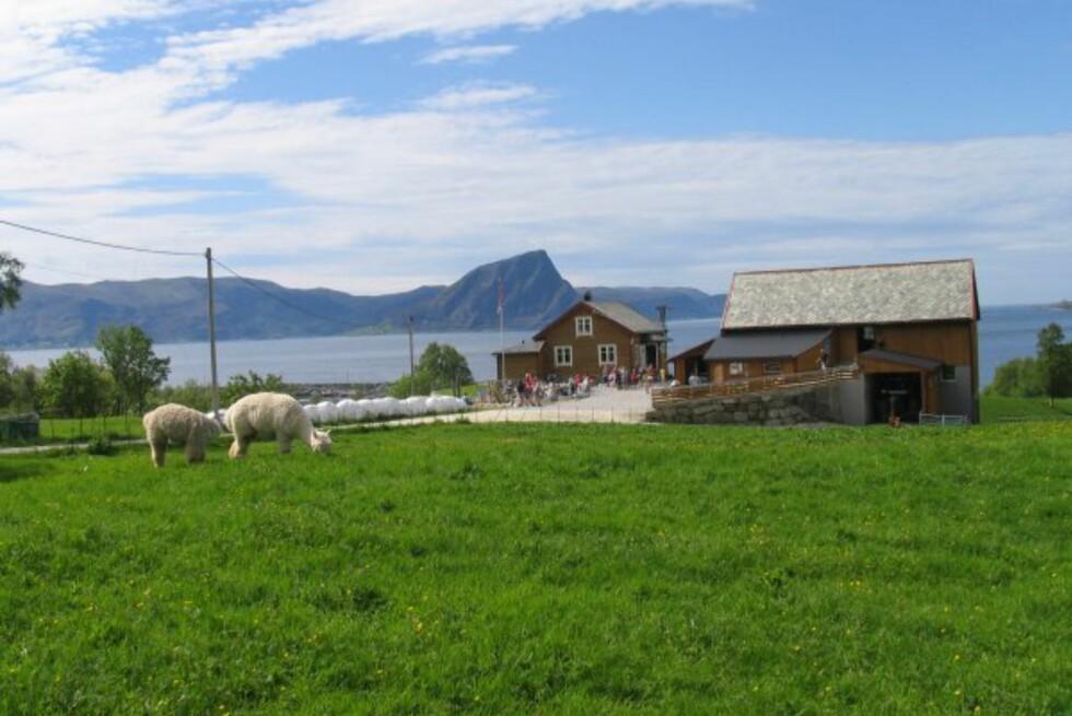 GJESTENS BESTE: Hakallegarden på Sunnmøre er folkste favoritt i kåringen av Norges beste spisested langs vei og vann. Foto: Hakallegarden