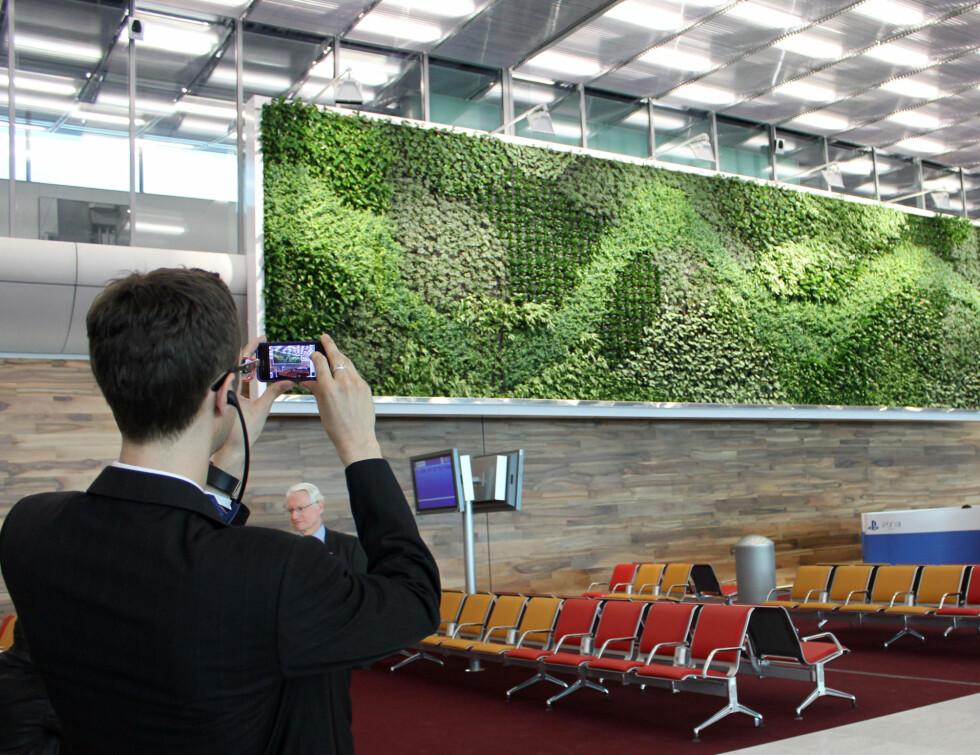 Lekre gressdetaljer på veggen. Foto: Silje Ulveseth