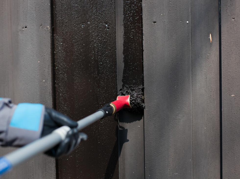 Rull ut malingen med en rulle beregnet for eksteriørmaling. Merk at det finnes ulike bredder på rullene, slik at du kan rulle maling ut mellom plankene på mange boliger.  Foto: Kristian Owren / Ifi.no