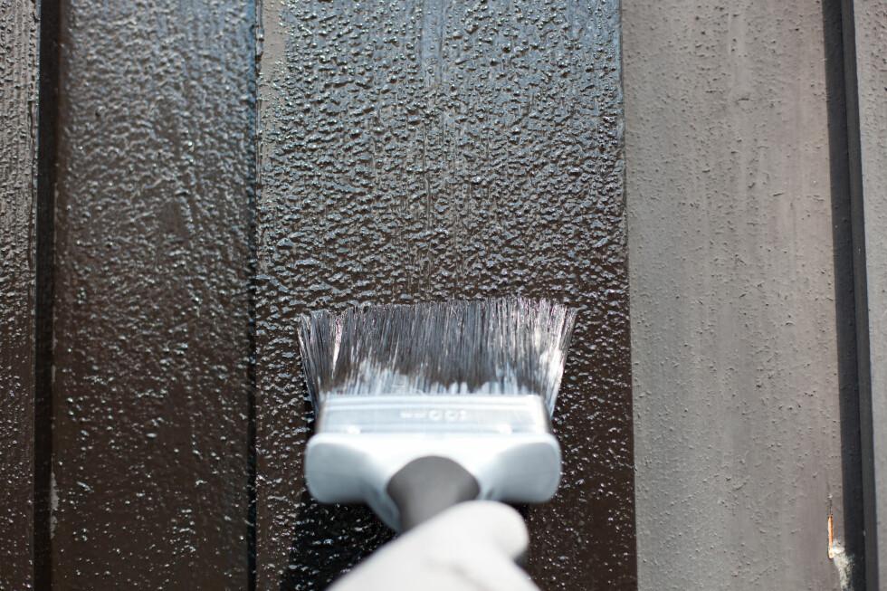 Bruk en malingspensel for å stryke ut malingen før den lukker seg på overflaten. Her er plankene i utgangspunktet ru, men du vil se det spesielt godt på glattere panel, og på glattere planker, som for eksempel dører.  Foto: Kristian Owren / Ifi.no