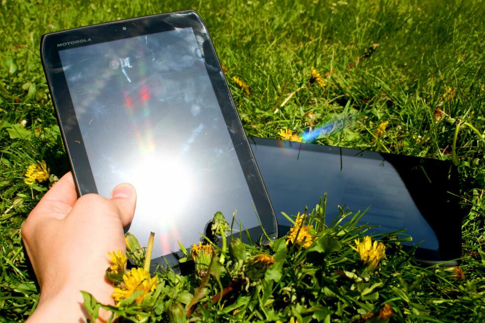 I PARKEN: Bør du ta med deg Motorola Xoom 2 (bak) og Motorola Xoom 2 Media Edition i parken i sommer? Nei. Det synes vi ikke du bør.  Foto: Ole Petter Baugerød Stokke