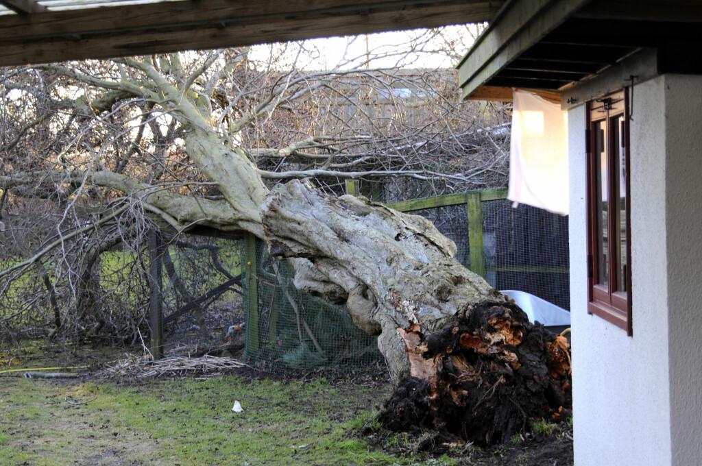 Små eller store skader, du får erstatning om du har villaforsikring på boligen din. Foto: Colourbox.com