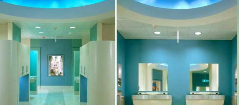 Dette himmelblå offentlige toalettet vant årets kåring av beste fasiliteter i USA. Foto: Chicago's Field Museum