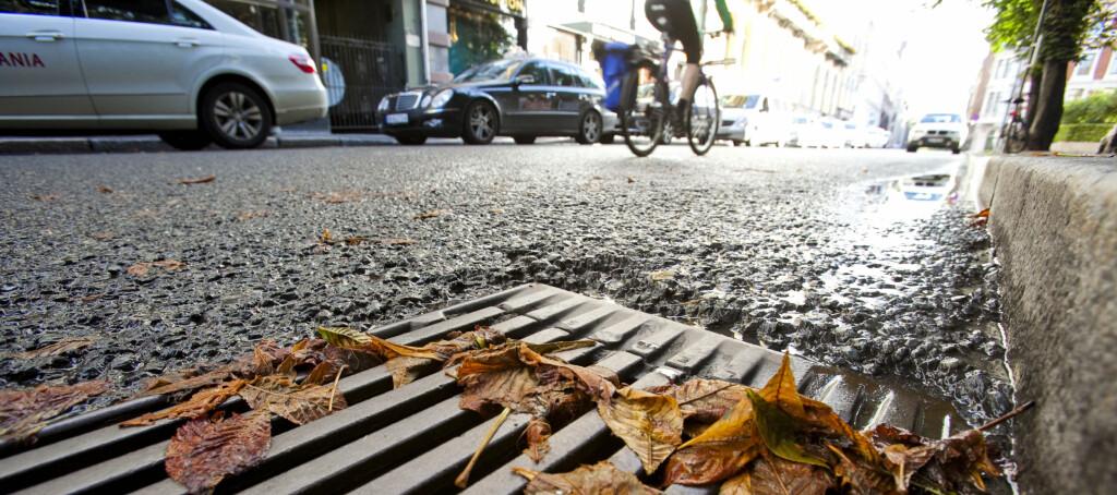 <b>KJØRING PÅ VÅTE HØSTVEIER:</b> De lovpålagte 1,6 mm er altfor lite på høsten - fagfolk anbefaler minst 3 mm på glatte høstveier. Foto: Per Ervland
