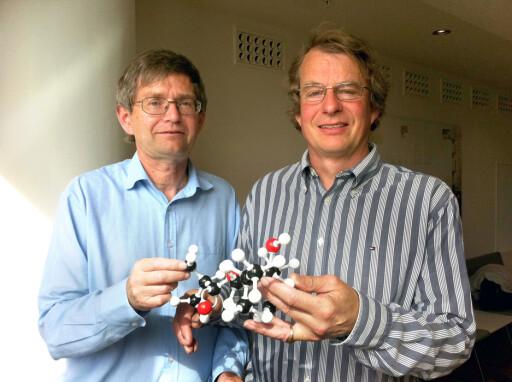 Per Jæger (t.v.) og Kolbjørn Mohn Jenssen viser oss hvordan problemet (C12H2403-molekylet) ser ut.  Foto: Elisabeth Dalseg