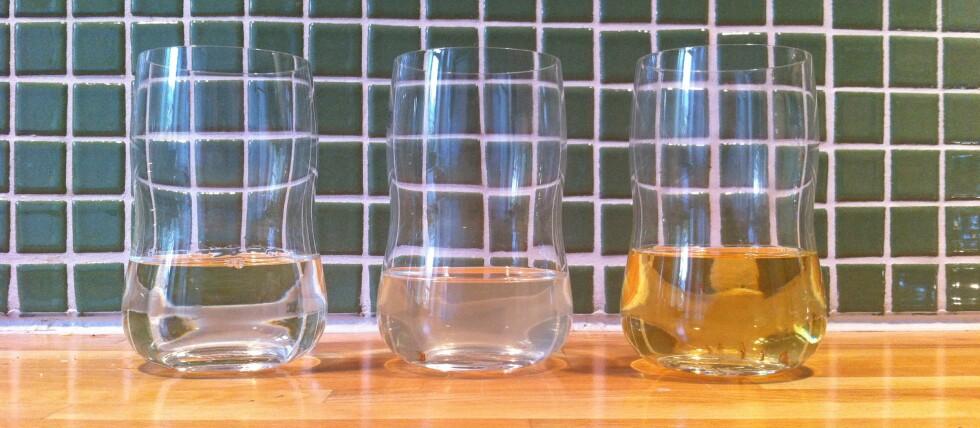 Vi tester kjerringråd: Vin, vin og zalo og eddik, vann og zalo. Tre banafluefeller på ett brett. Foto: Elisabeth Dalseg