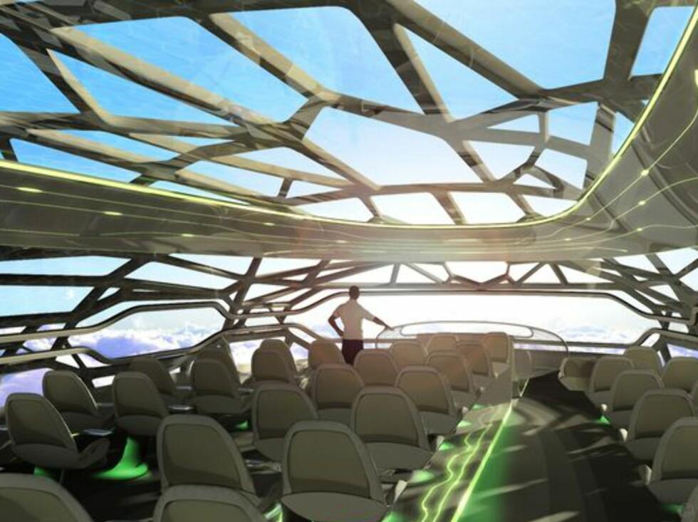 Beinlignende struktur, og membran som styrer lys og temperatur. Foto: Airbus